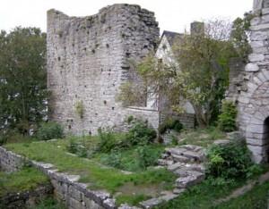 Visborgs ruin